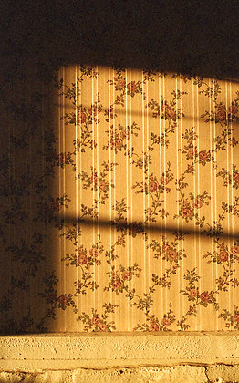 Golden Rays No.6