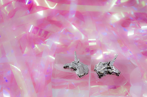 Not your unicorn earrings