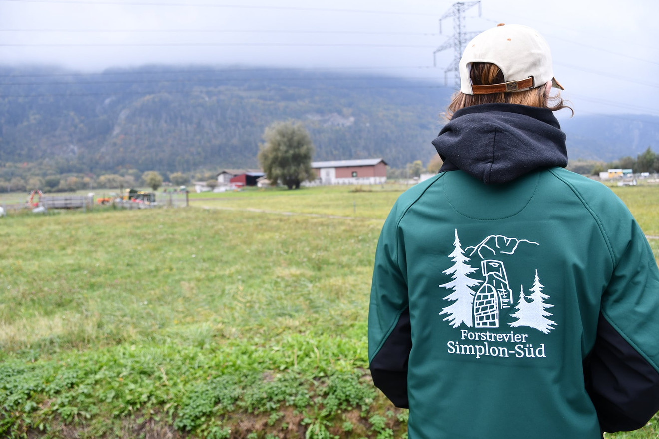 Forst Simplon Süd