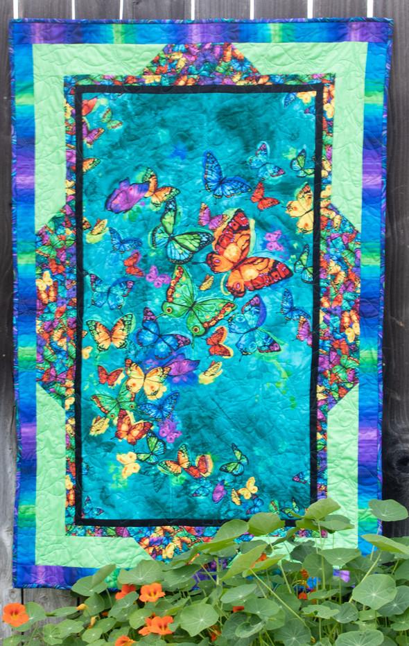SGD062 Panel Frames