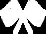 PIXLOOP-icon-31.png