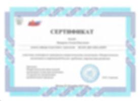 сертификат патриотическое воспитание 201