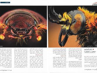 لقاء وإطلالة جديدة عبر مجلة التكوين العمانية