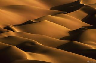 Image code: GW10 Yousef Al Habshi