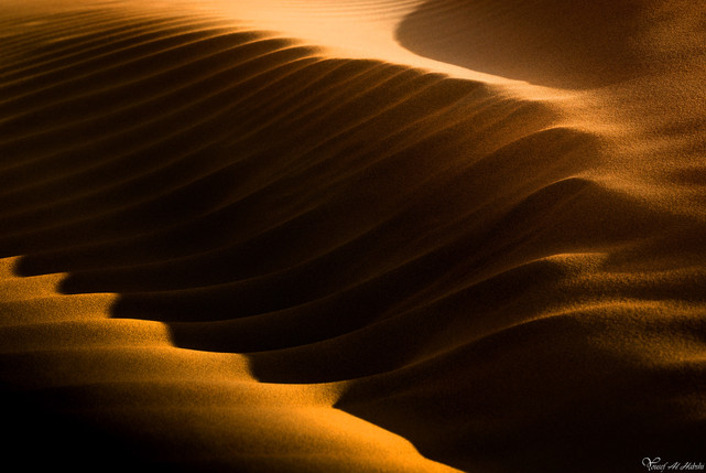 Image code: GW12 Yousef Al Habshi