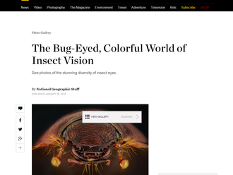 My works on National Geographic website