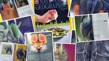 National Geographic Al-Arabiya