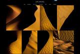 New Gallery: GOLDEN WAVES!