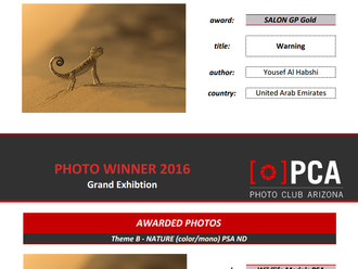 New medals in Photo Club Arizona (PCA)