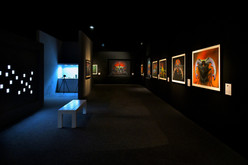 The Unseen Exhibition | Yousef Al Habshi