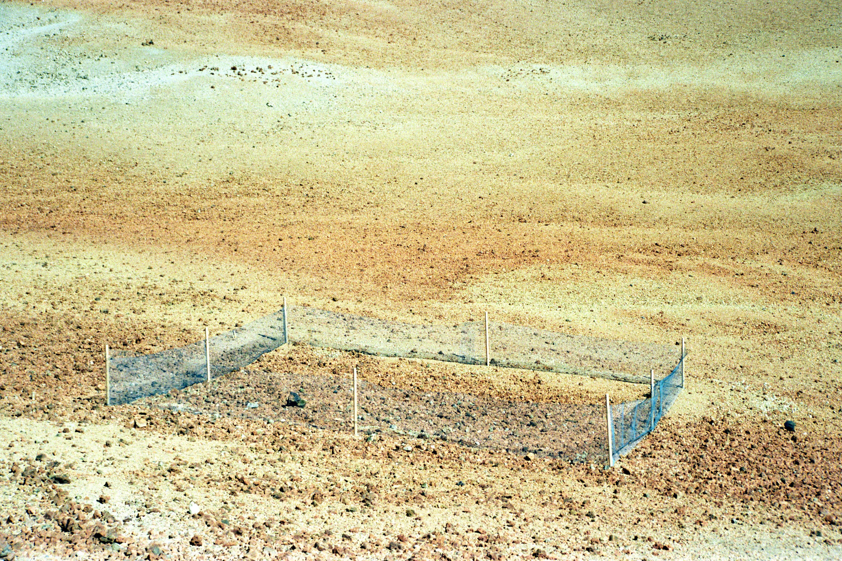 Wüste.Zaun2.jpg