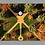 Thumbnail: ColorFall Dubuque, IA