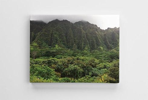 Ho'omaluhia Botanical Garden, Hawaii