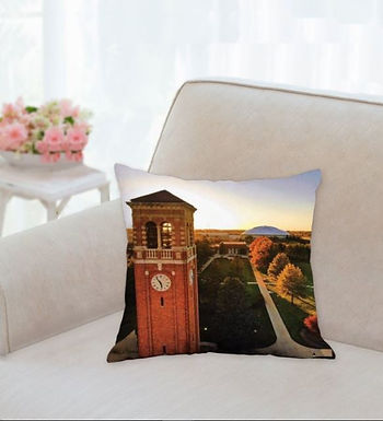 Cedar Falls Pillows
