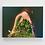 Thumbnail: 9 Mile Island - Dubuque, IA