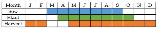 Kale Graph.png