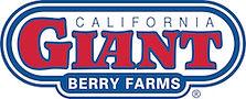 California Giant Berry Farm