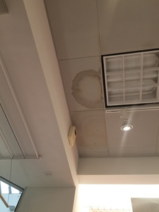 Ceiling Panel Replacement