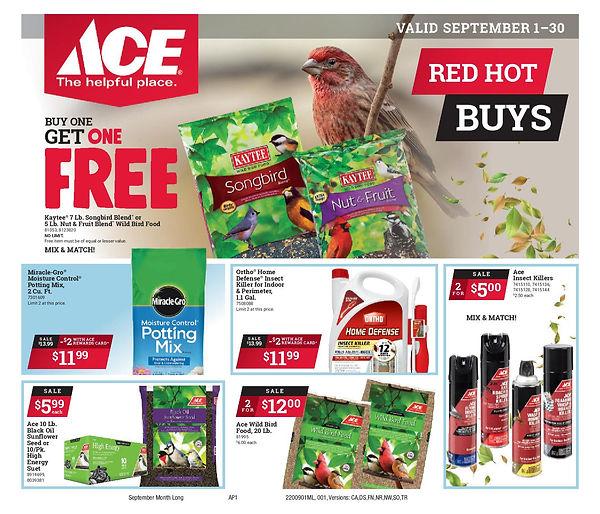 September 2020 Red Hot Buys Circular - C
