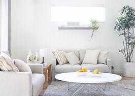 white longeroom and furniture