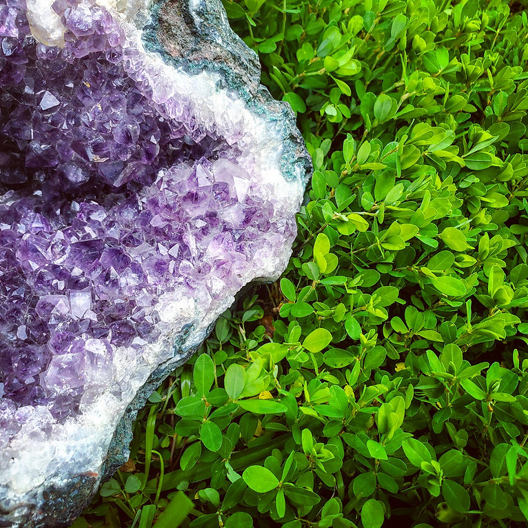 crystal and clover.jpg