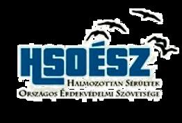 hsoeszlogo_edited.png