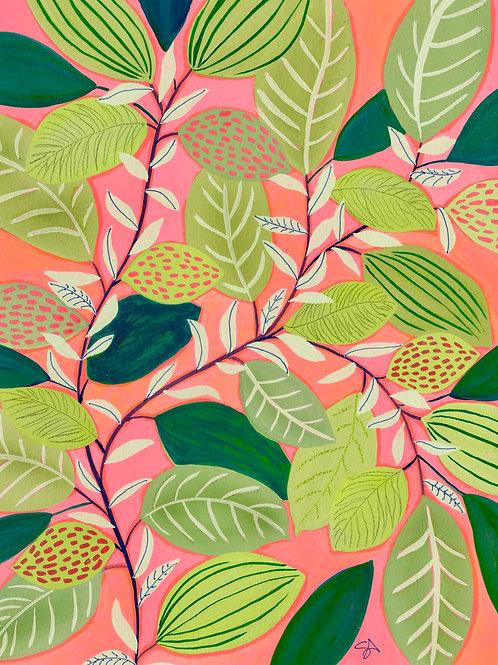 Pink Lady - Vertical Giclée Print