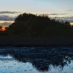 casey-o-connor-a-good-day-to-bush-pond.j