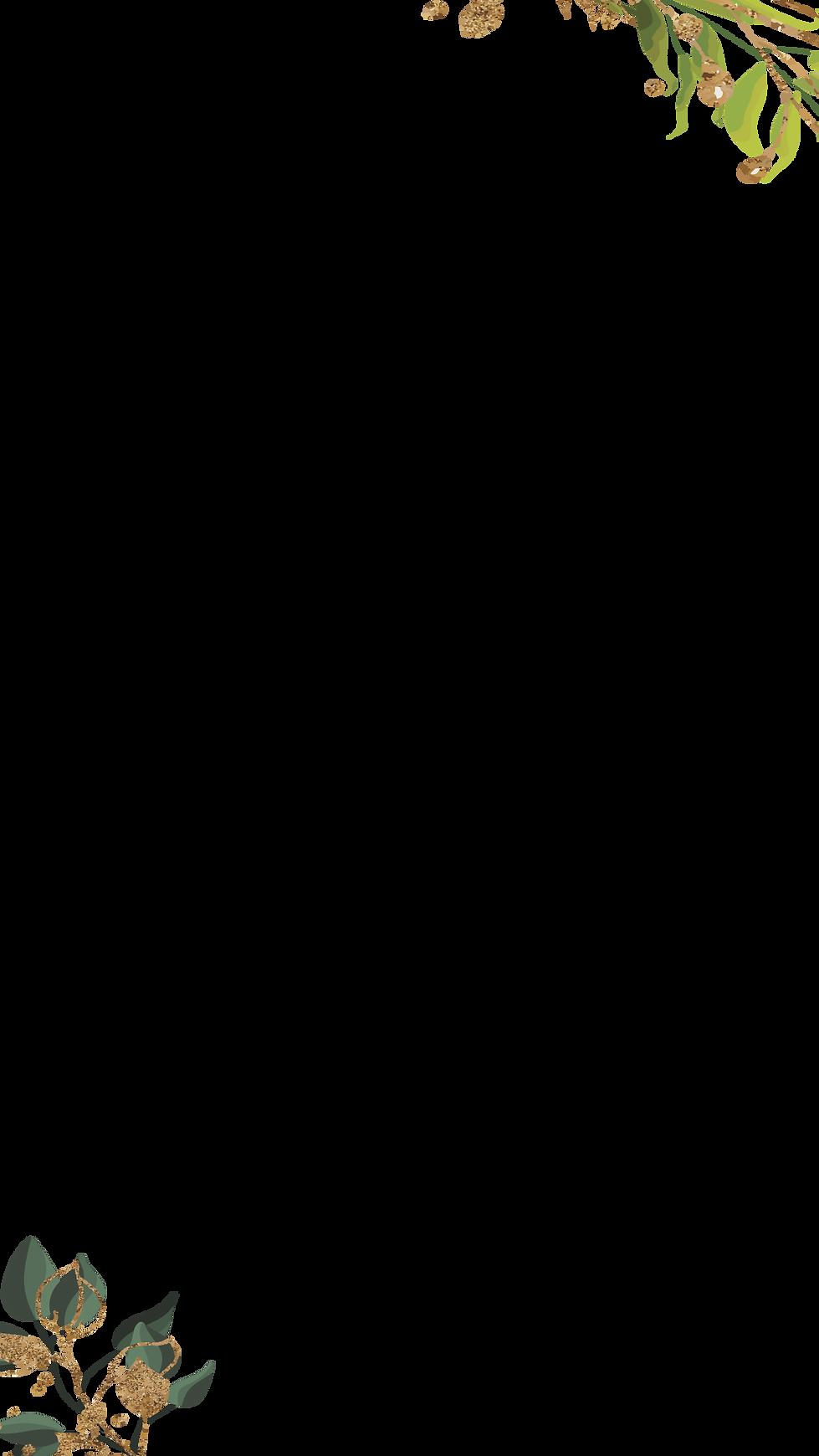 Daun 2.png
