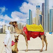 Dubai destination events incentives skyscrapers & camels