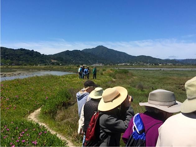 Marsh Walk 016.jpeg