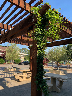Shade Structure 2a.jpg