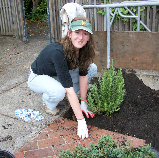 45 Katie Runkel plants Rosemary near the