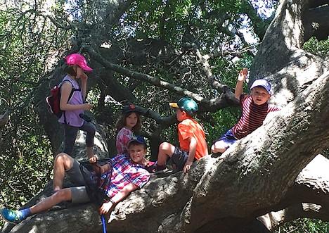 Ring Mountain Hike - Kids.jpeg