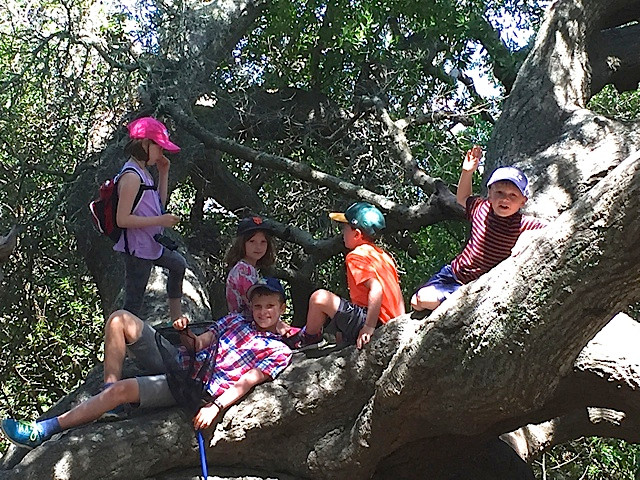 Ring Mountain Hike - Kids.jpeg