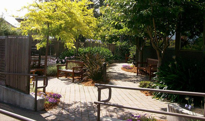 Corte Madera Library Garden