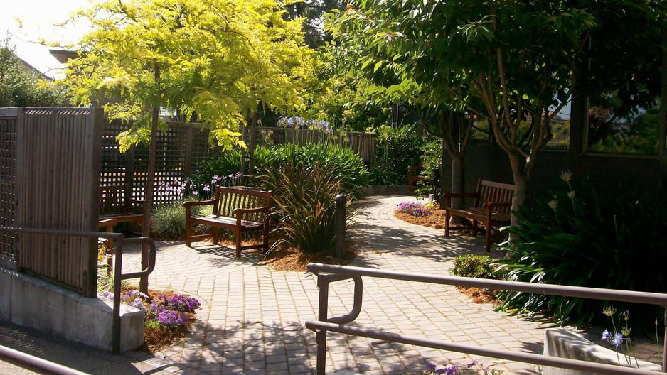 Library Reading Garden