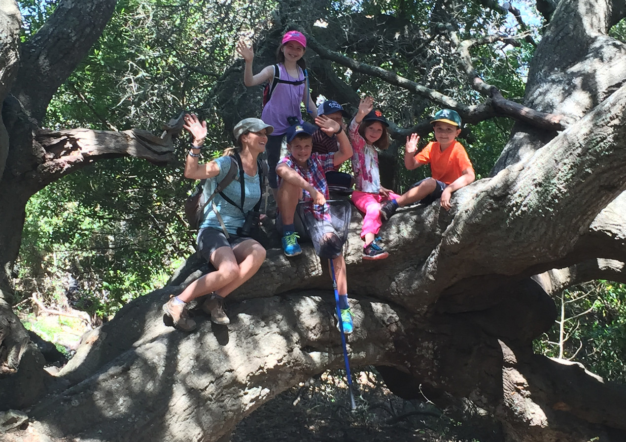 Ring Mountain HIke - Kids high res.JPG