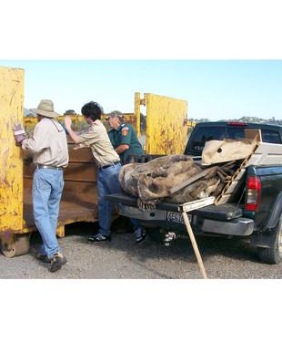 - Coastal Cleanup Volunteers 15.jpg