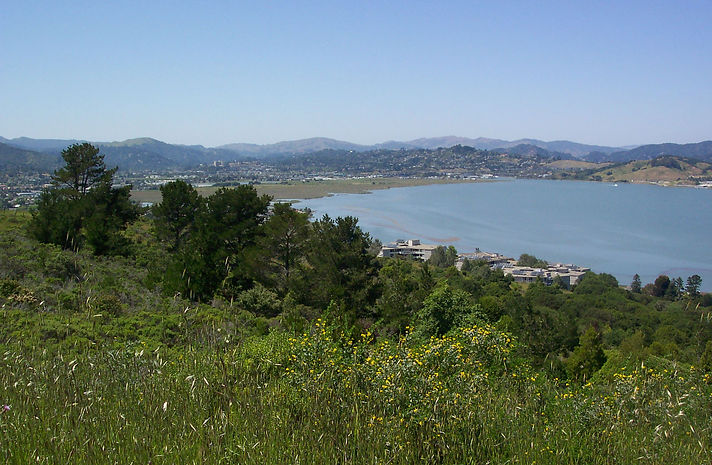 Corte Madera Ring Mountain Overlook