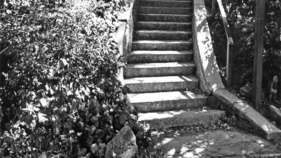 Trails, Lanes & Steps