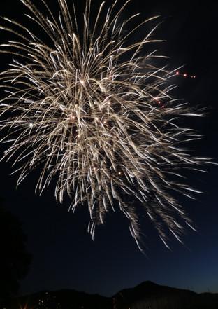 Fireworks 16.JPG