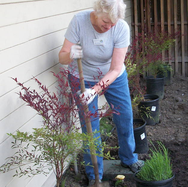 52 Linda Varonin, a master gardener, is