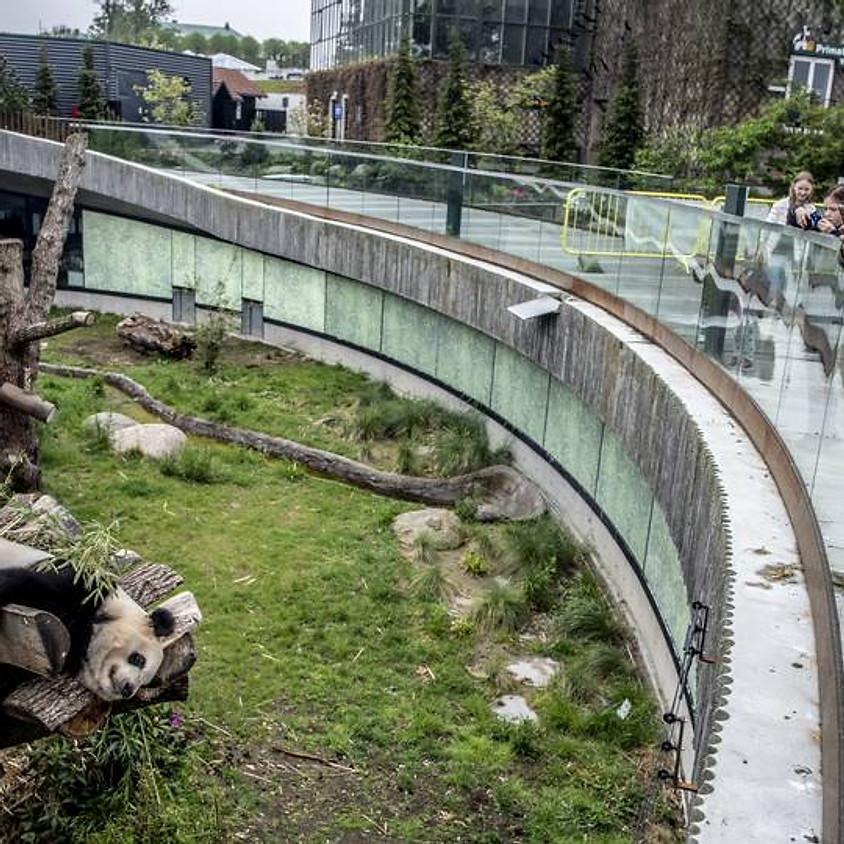 Tur til København Zoo