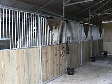 Intérieur des écuries barn Cheval Liberté