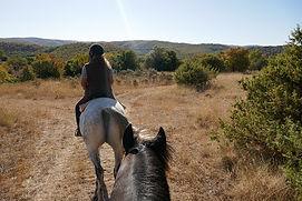 promenades à cheval en Adèche à l'automn