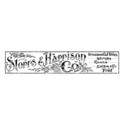 Storr's & Harrison