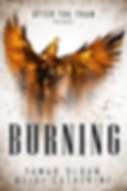 BURNING 2 FINAL.png
