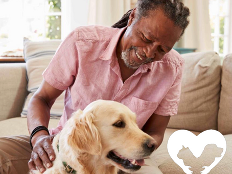 Here to Help: Navigating Animal-Assisted Therapy During COVID-19