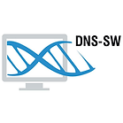 dns-sw.png